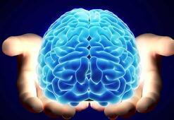 Beynin şekli kişilik farklarını belirliyor