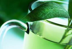 Hamileler yeşil çay içebilir mi