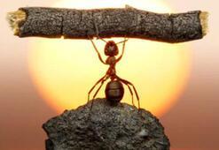 İş yerinde motivasyonu arttırmak için 13 öneri