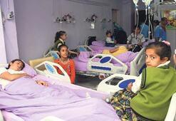 Okul sütü 1000 öğrenciyi hastanelik etti