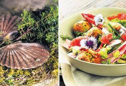 Gastronomi dünyasında neler olacak