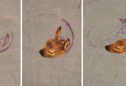Nakışlı hayvan portreleri