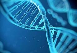DNAda veri saklama devri başlıyor