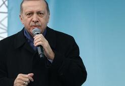 Erdoğandan Hollanda hakkında flaş sözler O detayı anlattı...