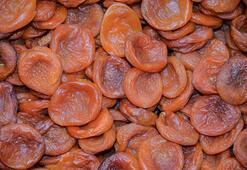 Magnezyum hangi besinlerde bulunur