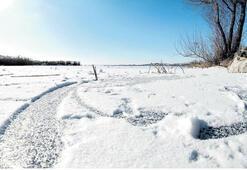 Türkiye buz tuttu