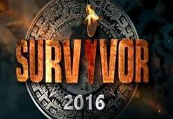 Survivor 2016da hangi ünlü ve gönüllüler yarışacak