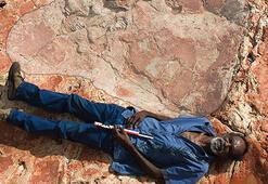Dünyanın en büyük dinozor ayak izi bulundu