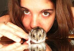 İnsanlar ve fareler binlerce yıldır aynı ortamda yaşıyor