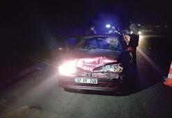 TEM'de kaza: 4 kişi yaralandı