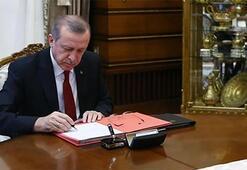 Cumhurbaşkanı Erdoğandan 54 kanuna onay
