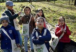 16 bin çocuk orman kaşifi oldu