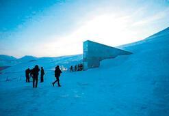 Norveç'e Kıyamet Günü Kütüphanesi