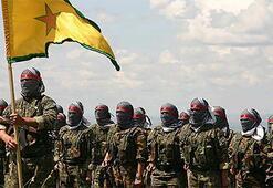 In Kobani, the state is PKK