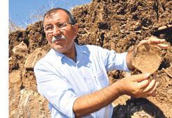 Siverek'teki 'toplu mezar'a suç duyurusu