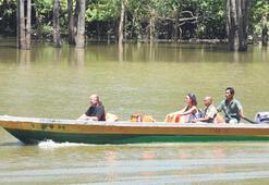Borneo'da bir hafta