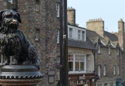 Kadınların hayvanlardan daha az heykeli olması Başbakan'ı harekete geçirdi