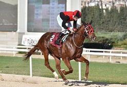 TSYD İzmir Şubesi Koşusunu İlkaan kazandı