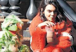 Kermit'le Kendall