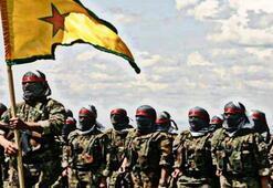 PKKnın El Kaide taktiği, uluslararası anarşist taburu doğurdu