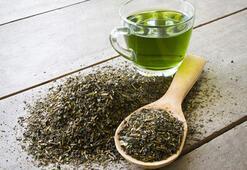 Yeşil çay faydalı mı, zararlı mı