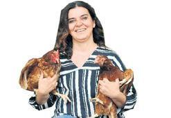 Onun evlatları tavukları