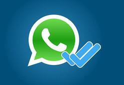 WhatsAppın mavi tiki davanın sonucunu belirledi