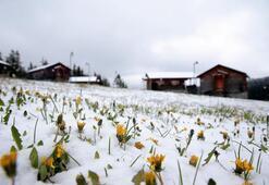 Mayıs ayında Trabzona kar sürprizi
