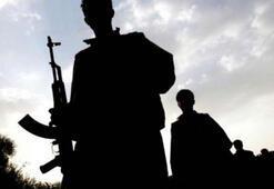 PKK'nın bölgesel franchising stratejisi