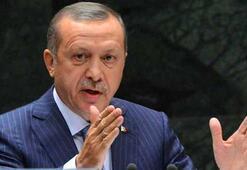 Erdoğan 14 kanunu onayladı