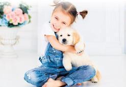 Yeni probiyotiğimiz köpekler mi