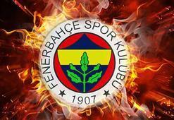 Fenerbahçe transfer haberleri - 21 Haziran Fenerbahçe transfer gündemi