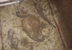Tarsustaki kaçak kazıdan balık ve kuşlu mozaik çıktı