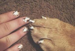 Evcil hayvanınızla aynı manikürü yaptırın