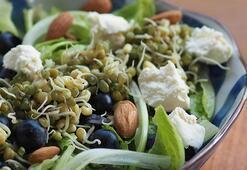 Filizlendirilmiş maş fasulyeli ve yaban mersinli marul salatası