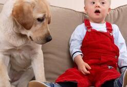 Zihinsel engelli çocuğu olan ailelere eğitim verilecek