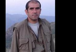PKK, hava operasyonunda üst düzey yöneticisinin öldüğünü 4 ay sonra açıkladı
