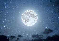Dünyanın uydusu Ayda su izine rastlandı