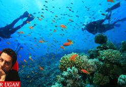 Suyun altında başka bir gezegen var