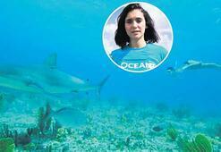 Köpekbalıklarıyla yüzdü