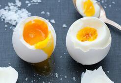 Diyetlerin vazgeçilmezi protein