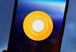 Android O sadece bir hafta uzakta olabilir