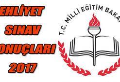 Ehliyet sınav sonuçları açıklanacak mı - 29 Temmuz MEB Ehliyet 2017