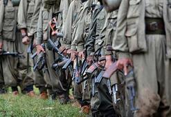 Hakkaride üst düzey 4 PKKlı öldürüldü