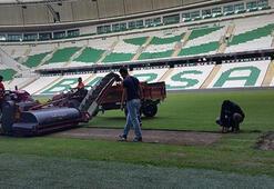 Bursasporun stadında hibrit çim ekimi