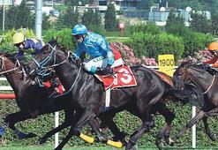 At yarışları özelleştiriliyor