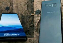 Samsung Galaxy Note 8in yeni renk seçeneği ortaya çıktı