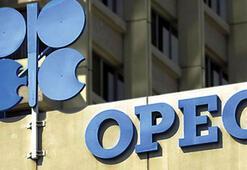 OPEC: Petrol arzında sorun görmüyor