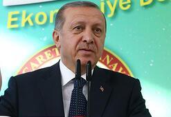 Erdogan: Its a historic vote