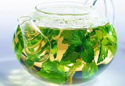 Bitki çayları ile kışın ev ilacınızı hazırlayın